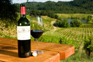 Bottle of red wine and glass on table with vineyard in background.